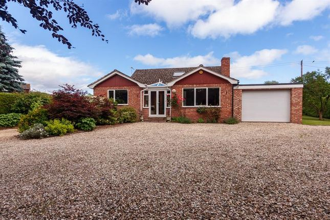 Thumbnail Detached house for sale in Holly Bush Lane, Much Birch, Hereford