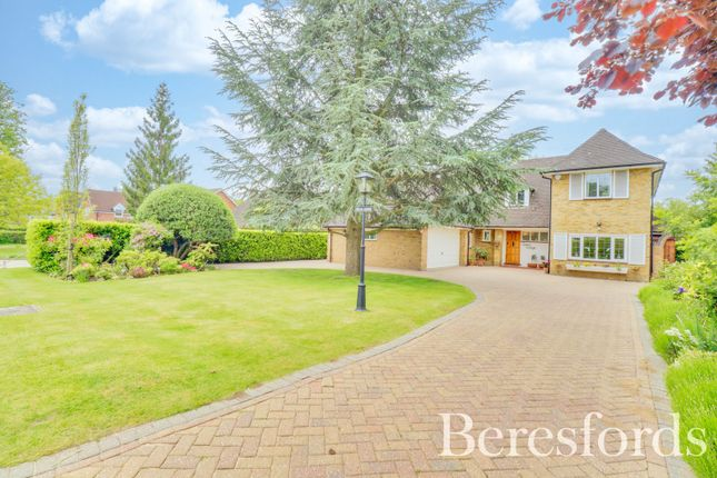 Thumbnail Detached house for sale in Heronway, Hutton Mount, Brentwood, Essex