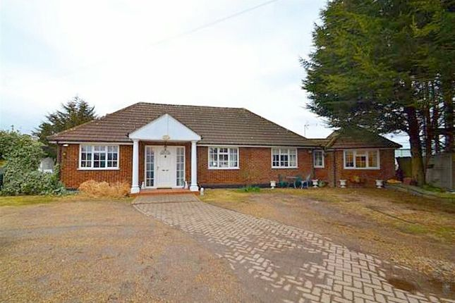 Thumbnail Bungalow for sale in Old House Lane, Roydon, Harlow