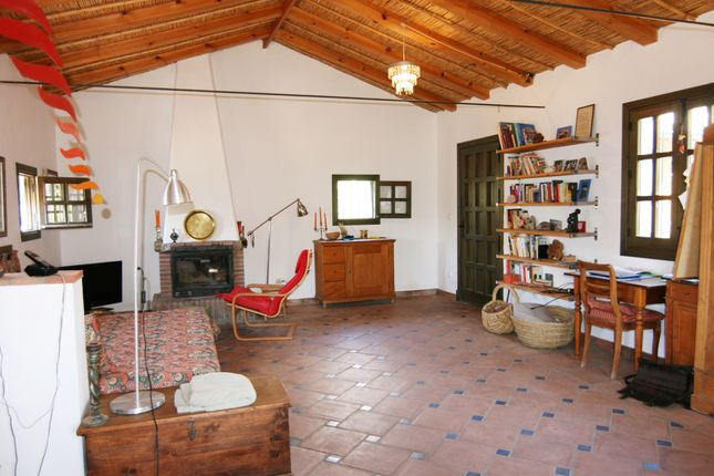Extensive Living Room
