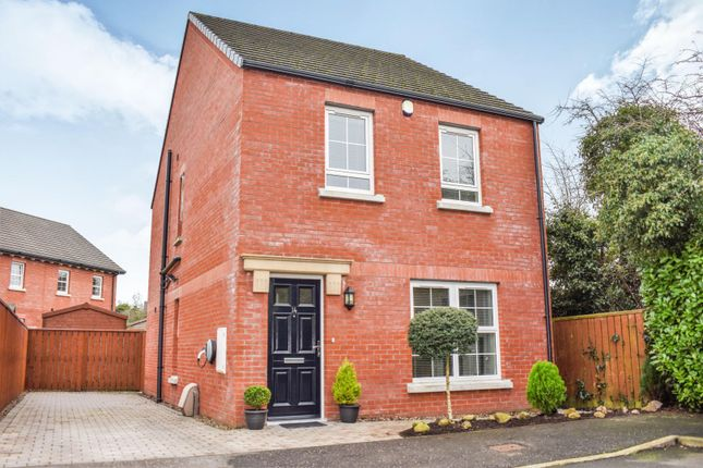 Thumbnail Detached house for sale in Magheralave Meadows, Lisburn