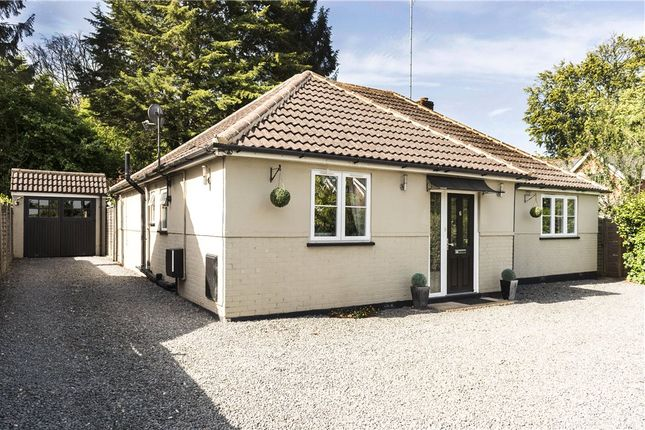 Thumbnail Bungalow for sale in Pinehill Road, Crowthorne, Berkshire