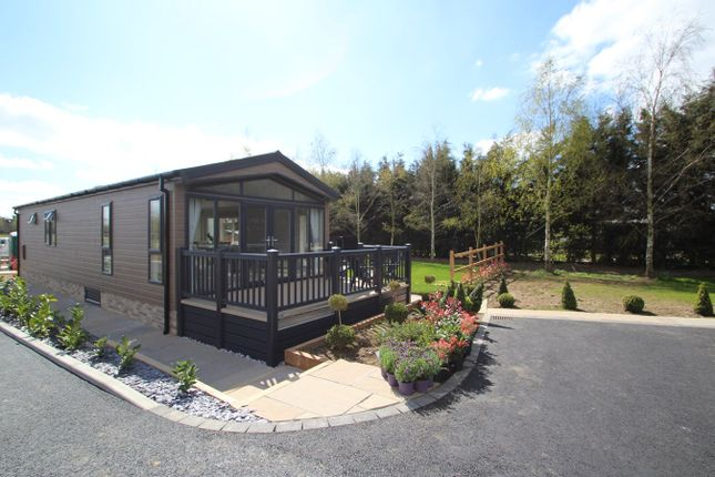Thumbnail Mobile/park home for sale in Old Felixstowe Road, Bucklesham, Ipswich