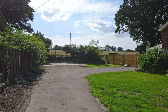 Thumbnail Land for sale in Ropley Dene, Alresford, Hampshire