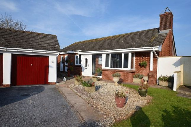 Thumbnail Bungalow for sale in Freshwater Drive, Paignton