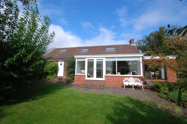 Thumbnail Bungalow for sale in Back High Market, Ashington