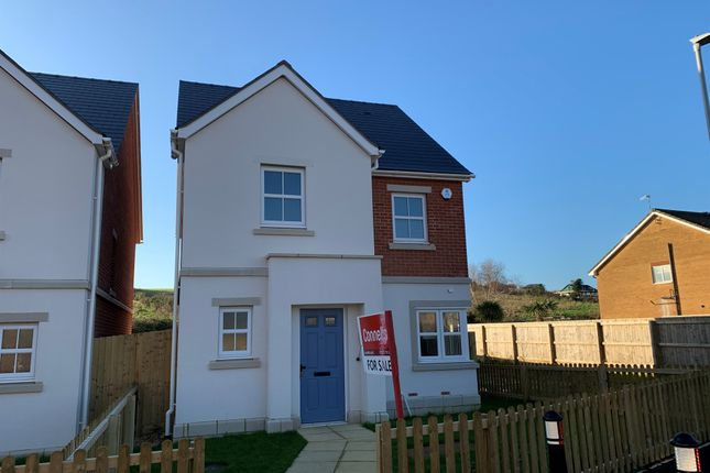 Thumbnail Detached house for sale in Holzwickede Court, Weymouth
