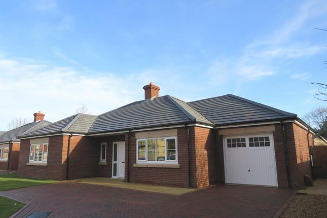 Thumbnail Detached bungalow for sale in Garden Close, Grantham