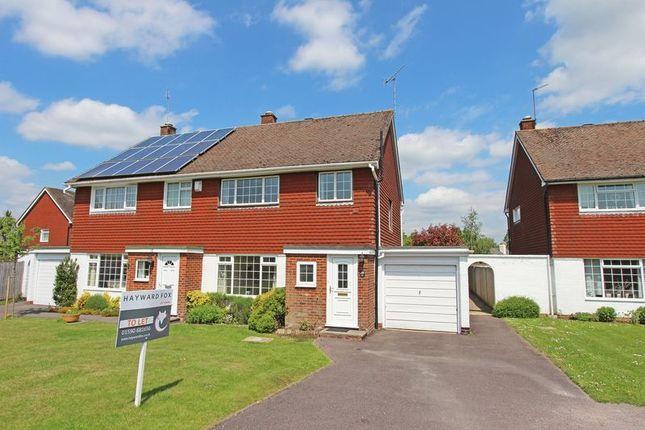 Thumbnail Semi-detached house to rent in Greenways Road, Brockenhurst