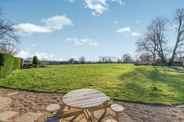 Rear Garden of Ropley, Alresford, Hampshire SO24
