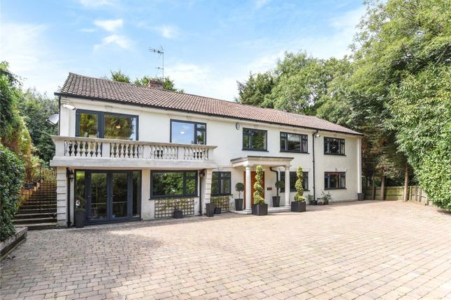 Thumbnail Detached house for sale in Debden Road, Loughton, Essex