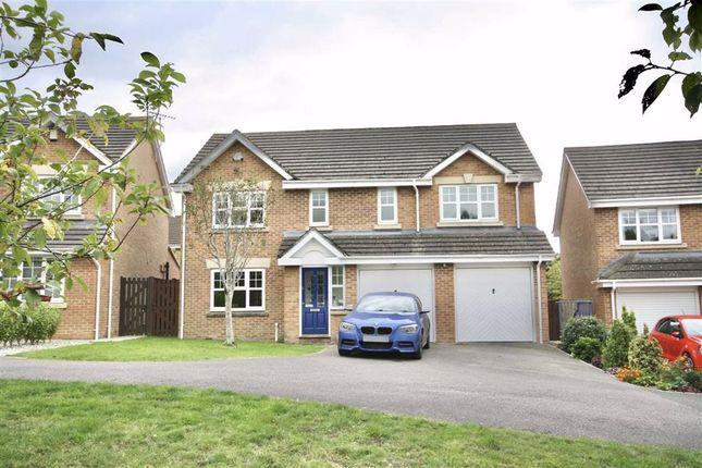Thumbnail Detached house for sale in Sutherland Crescent, Chippenham, Wiltshire
