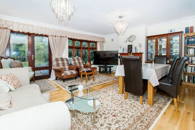 Thumbnail Semi-detached house for sale in Romford Road, Chigwell