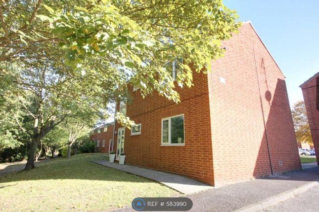 Thumbnail Flat to rent in Jacklin Walk, Eaglescliffe, Stockton-On-Tees