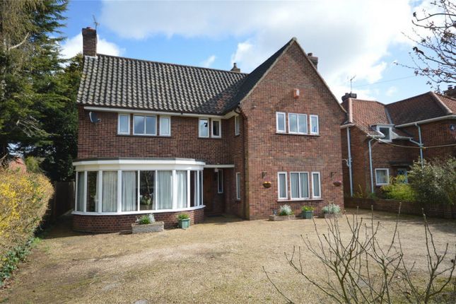 Thumbnail Detached house for sale in Daniels Road, Norwich