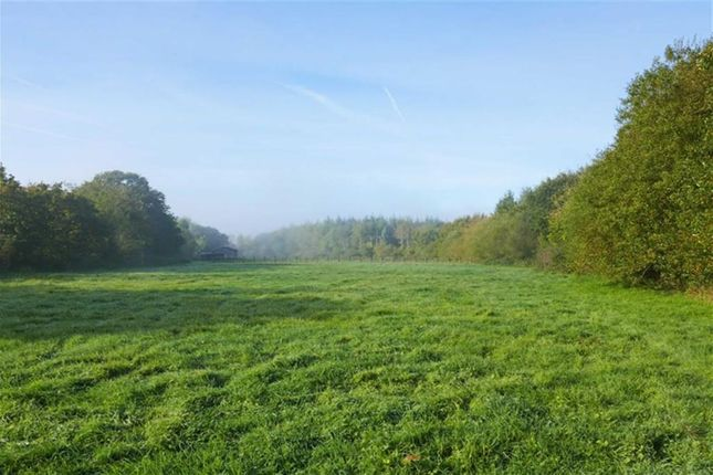 Land for sale in St. Giles-On-The-Heath, Launceston