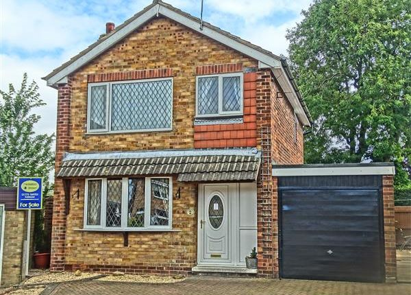 Thumbnail Detached house for sale in Clinton Avenue, Brinsley, Nottingham
