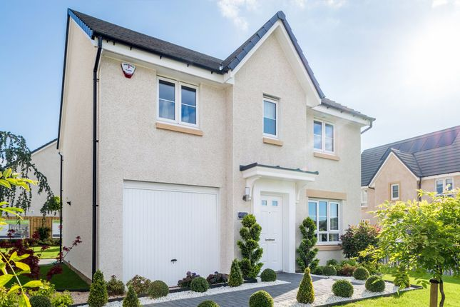 "Thumbnail Detached house for sale in ""Fenton"" at Clippens Drive, Edinburgh"