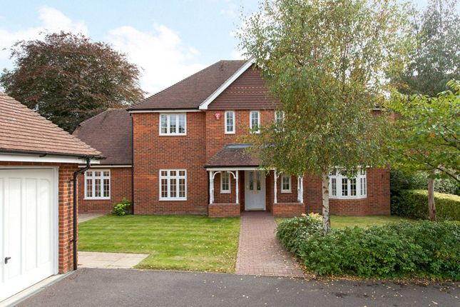 Thumbnail Detached house for sale in Llewellyn Park, Twyford, Berkshire