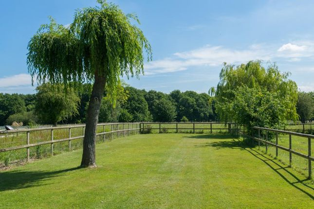 Thumbnail Detached house for sale in Rectory Chase, Doddinghurst, Brentwood, Essex