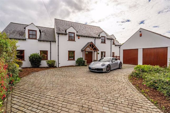 Thumbnail Detached house for sale in Overton Lane, Overton, Swansea