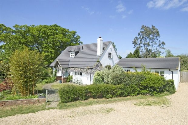 Thumbnail Detached house for sale in North Ripley, Bransgore, Christchurch, Dorset