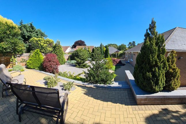 Thumbnail Detached bungalow for sale in Bucklesham Road, Ipswich