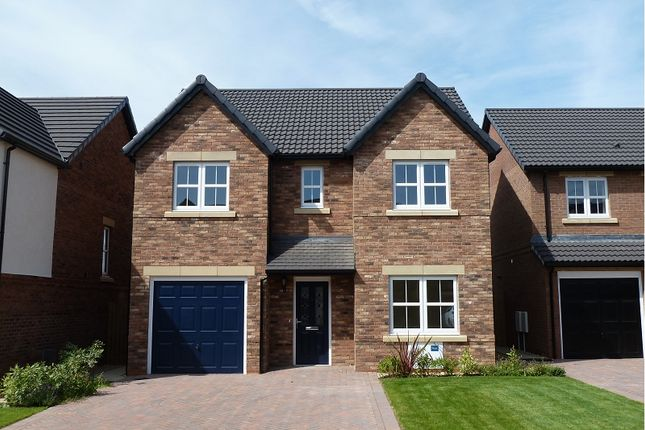 Thumbnail Detached house to rent in Maxwell Drive, Carlisle, (Crindledyke Farm)