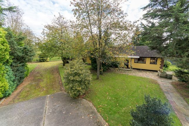 Thumbnail Detached bungalow for sale in Fen Lane, Garboldisham, Diss, Norfolk