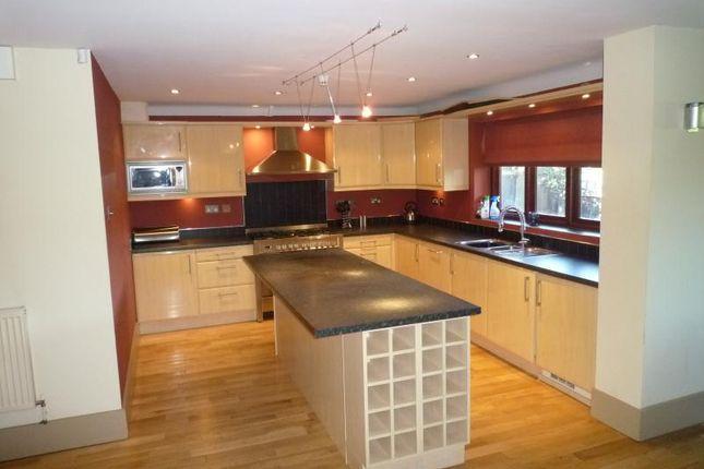 Thumbnail Detached house to rent in 15A Tavistock Drive, Mapperley Park, Nottingham