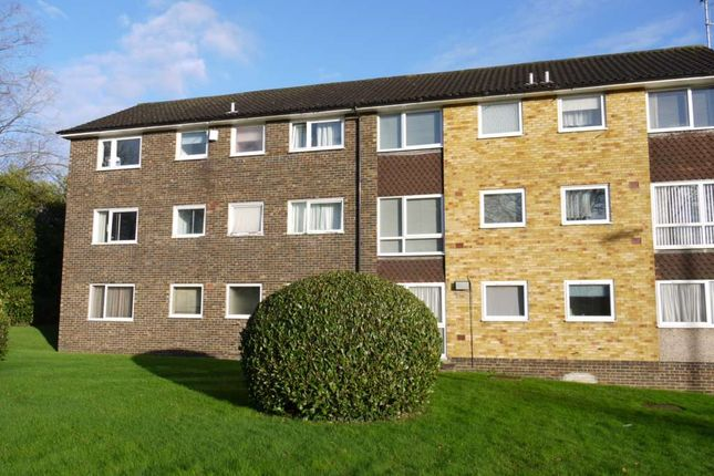 Thumbnail Maisonette to rent in Wokingham Road, Binfield, Bracknell