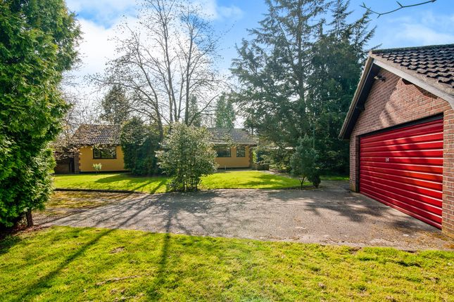 Thumbnail Detached bungalow for sale in Fen Lane, Garboldisham, Diss