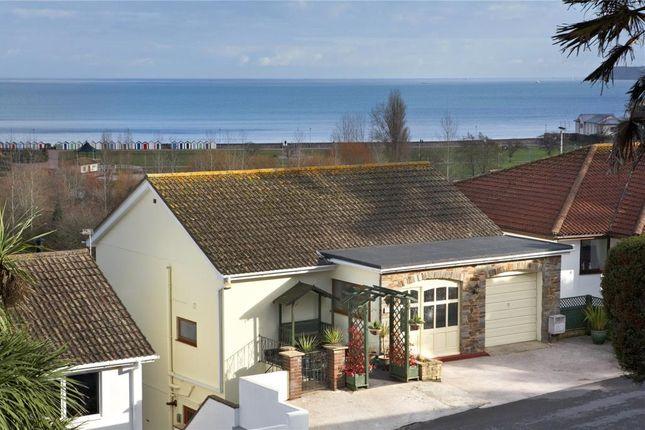 Thumbnail Detached house for sale in Clennon Park, Paignton, Devon