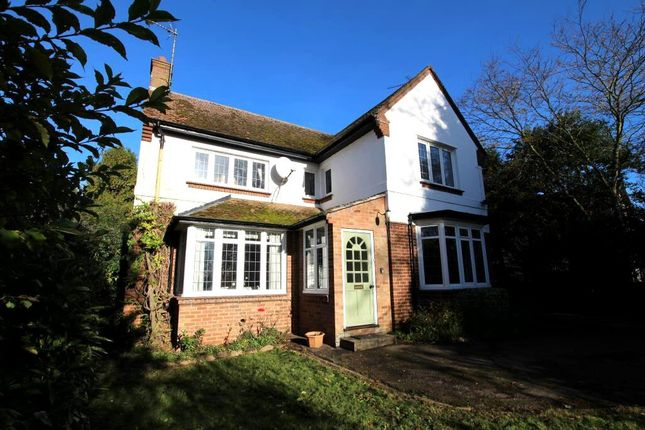Thumbnail Detached house for sale in Witchford Road, Ely