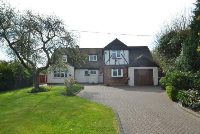 Thumbnail Detached house for sale in Rettendon Common, Chelmsford, Essex