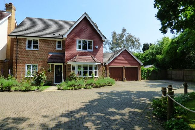 Thumbnail Detached house to rent in Highcliffe Close, Woodley, Reading