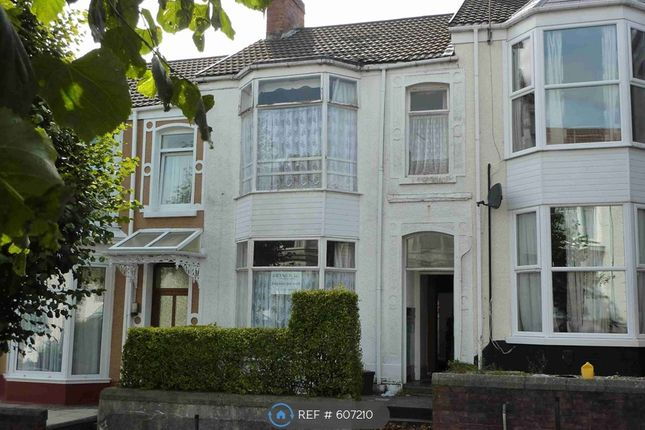 Thumbnail Terraced house to rent in Pantygwydr Road, Uplands, Swansea