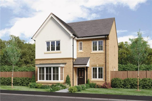 "Thumbnail Detached house for sale in ""The Mitford"" at Parkside, Hebburn"