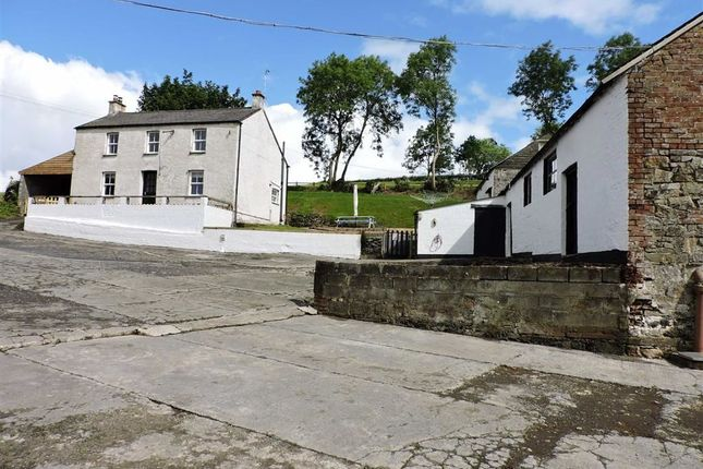 Thumbnail Property for sale in Llangynin, St. Clears, Carmarthen