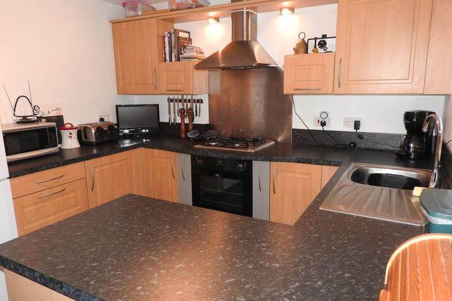 Thumbnail Property to rent in Erw Werdd, Birchgrove, Swansea