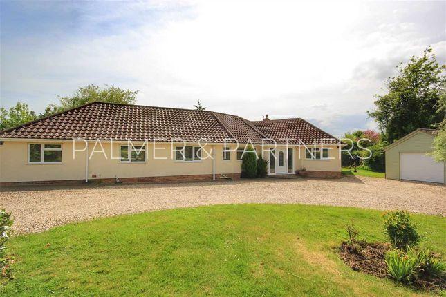 Thumbnail Detached bungalow for sale in Gordon Hills, Slough Lane, Little Cornard