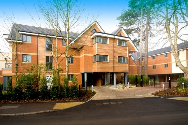 Thumbnail Flat to rent in Cliddesden Road, Basingstoke