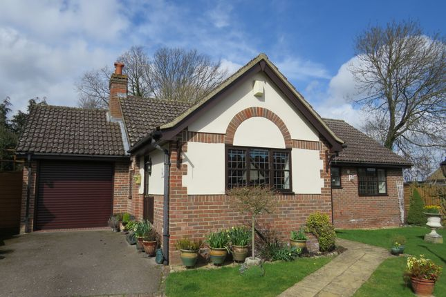 Thumbnail Detached bungalow for sale in The Street, Bradwell, Braintree