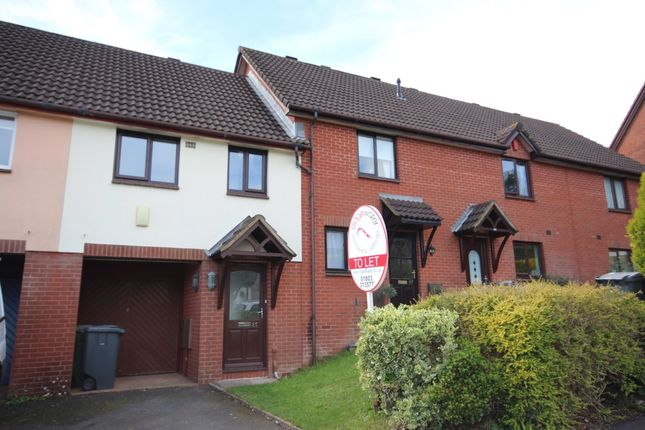 Thumbnail Terraced house for sale in Heron Way, Torquay