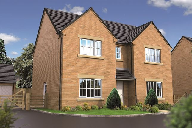 """Thumbnail Detached house for sale in """"The Houghton"""" at West Hill Road, Retford"""