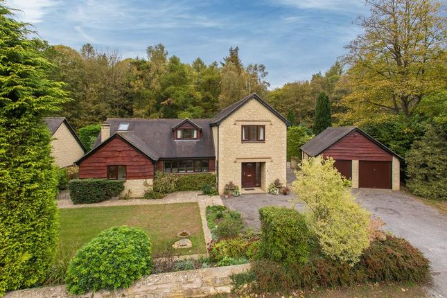 Thumbnail Detached house for sale in The Ride, Tubney Wood, Abingdon