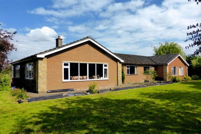 Thumbnail Country house for sale in Robbs Lane, Outwell, Norfolk