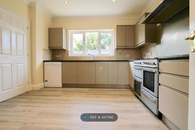 Thumbnail Bungalow to rent in Page Close, Poringland, Norwich