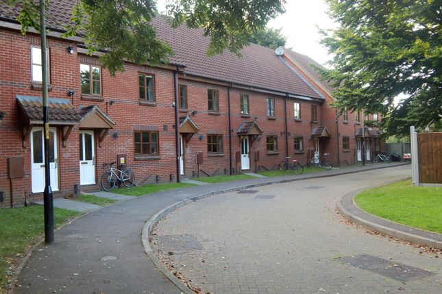 Thumbnail Terraced house to rent in Nelson Street, Norwich