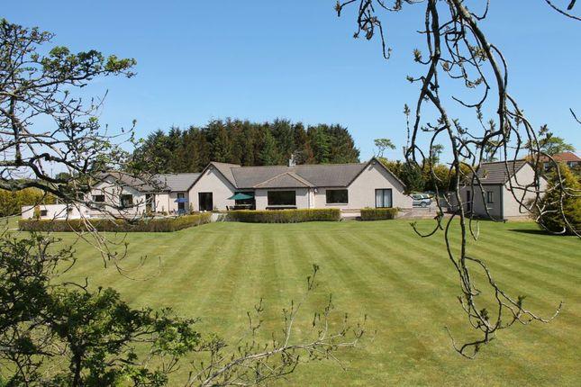 Thumbnail Detached bungalow for sale in Burnside Cottage, Coldingham Moor, Berwickshire
